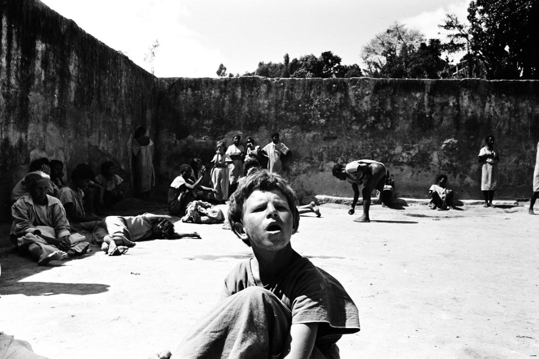 Holocausto Brasileiro – Livro
